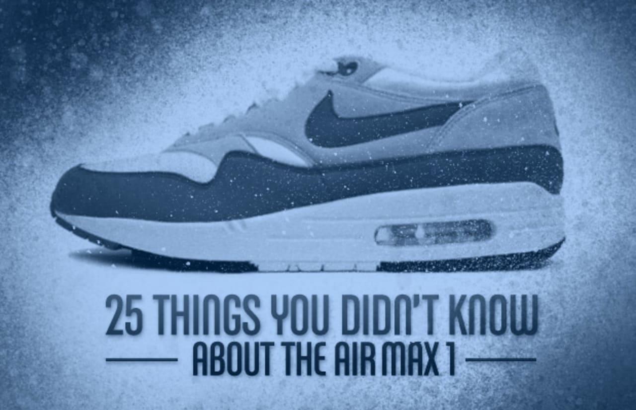 Sole Provider Sneakers: Nike Air Max 1 vs Nike Air Maxim