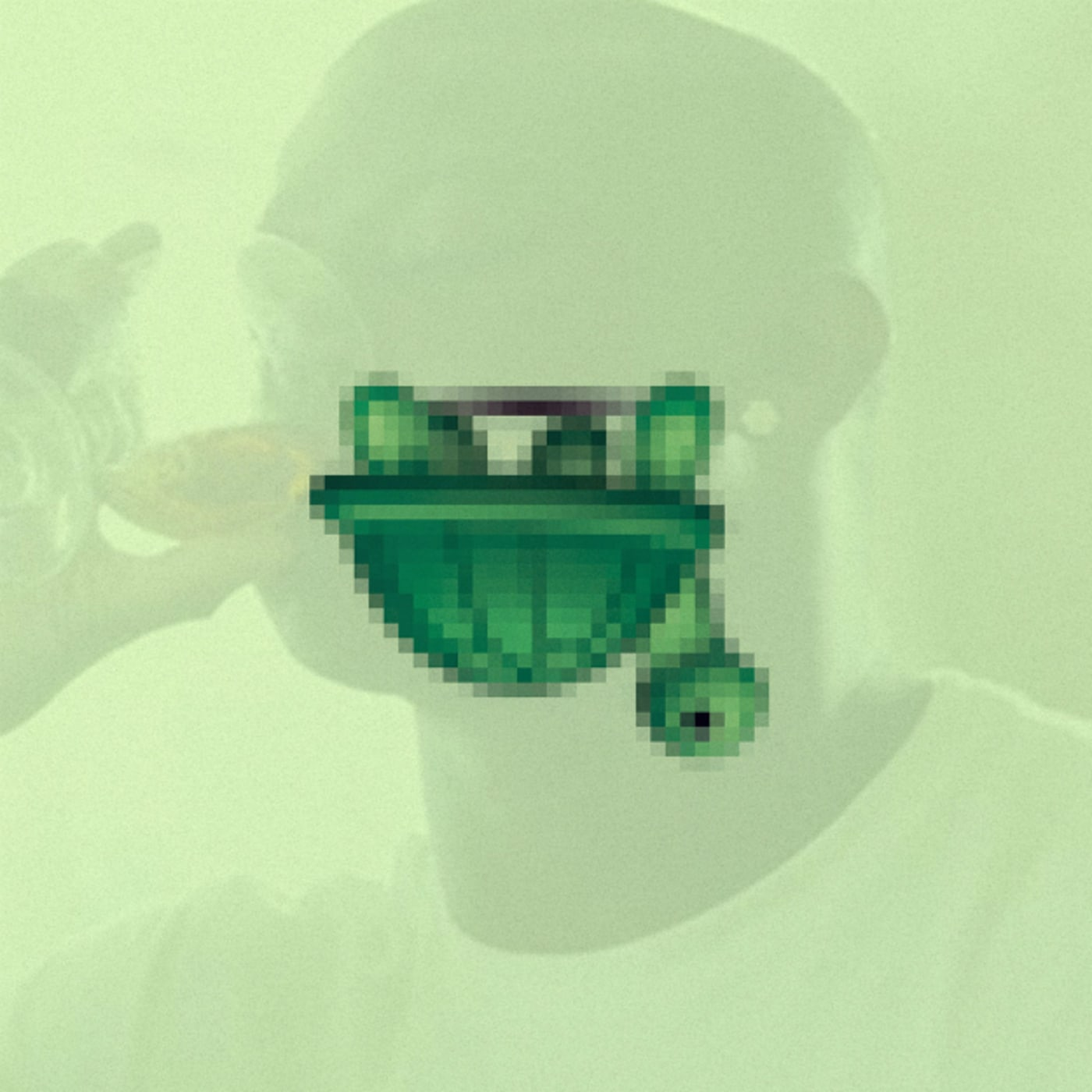 trippy turtle fofo