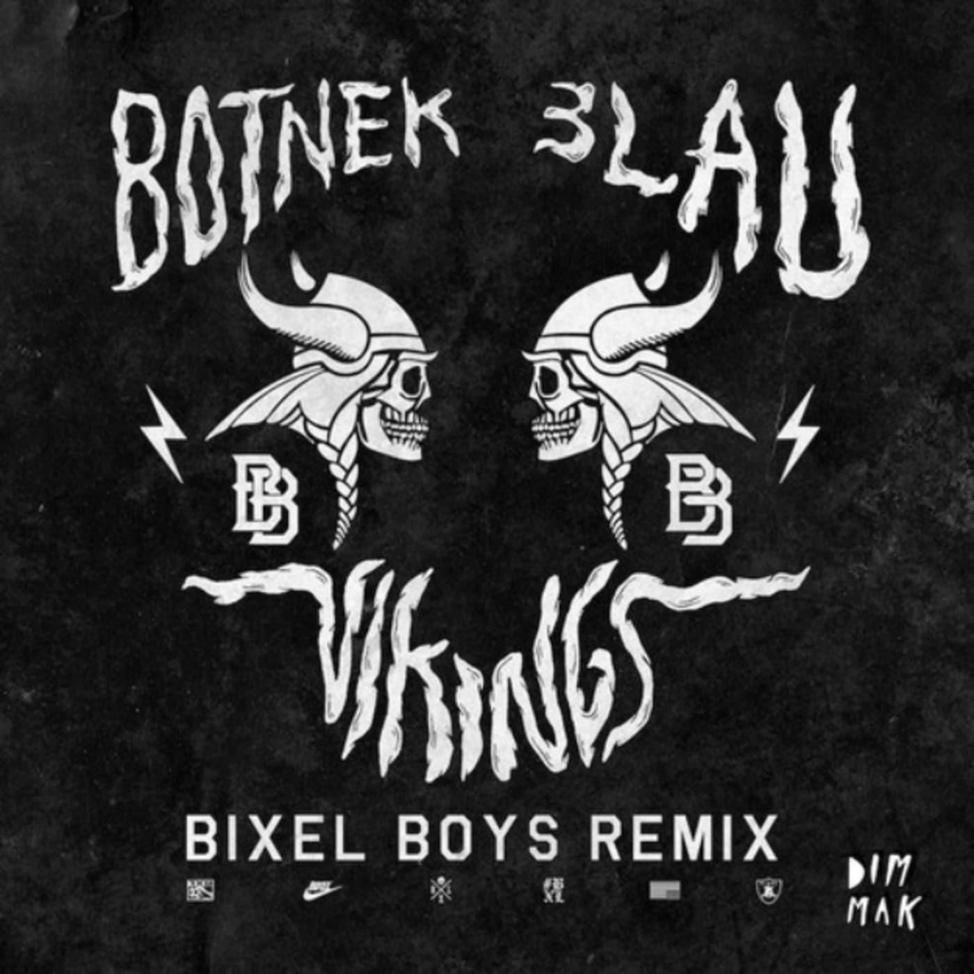 bixel boys vikings rmx