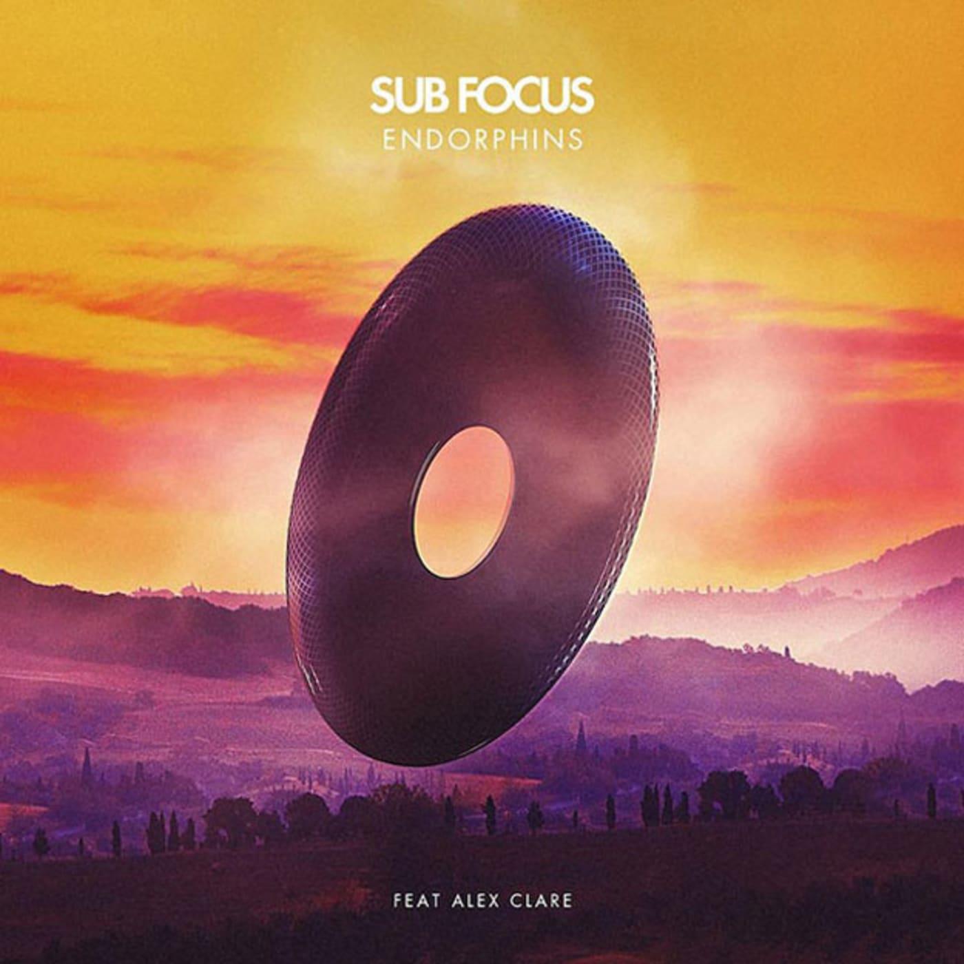 sub focus endorphins