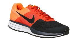 Nike Air Pegasus 30_5