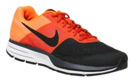 Nike Air Pegasus 30_5