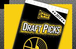 fools-gold-draft-picks-2014