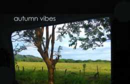 sabo-autumn-vibes