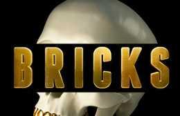 carnage-migos-bricks