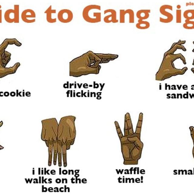 Essay/Term paper: Gang violence