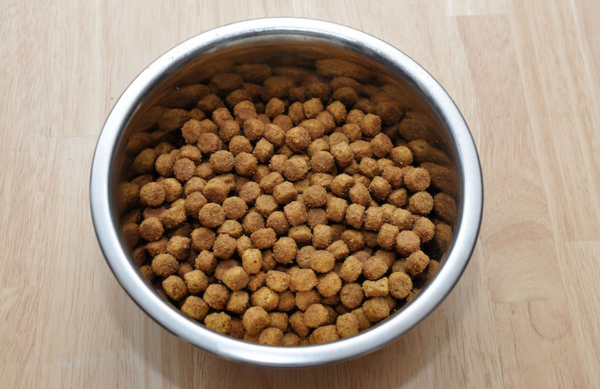 Wisconsin Woman Crushed Up Dog Food, Sold It as Heroin