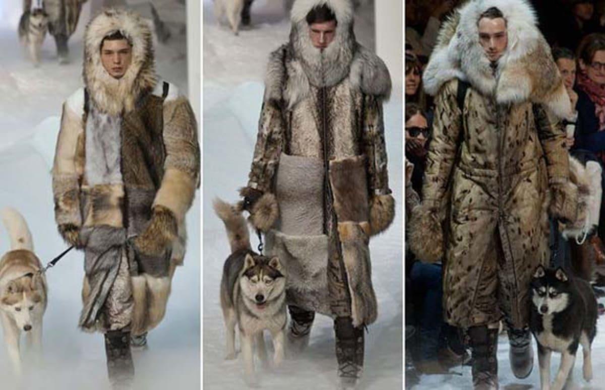 Polar bear fashion