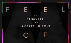 tensnake-feel-of-love