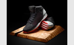 D Rose 3 Alt Away 2 copy
