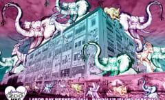 electric-zoo-2014-li