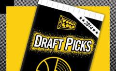 fools-gold-draft-picks-2014