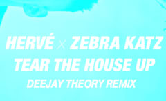 tear-the-house-up-deejay-theory-remix