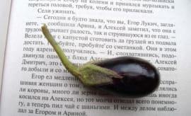 Small Eggplant via tOrange.us