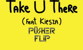 pusher-take-u-there-flip