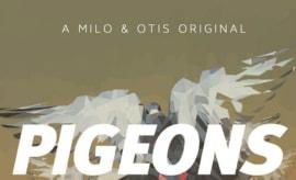 milo-otis-pigeons