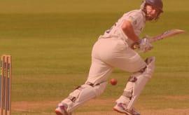 cricket lead 1