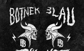 bixel-boys-vikings-rmx