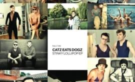Catz Eats Dogz