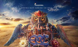 edc-las-vegas-2015