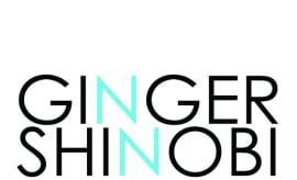 Ginger-Shinobi-You-Are-HARIKIRI-Remix-Art