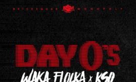 "Waka Flocka Flame ""Day Zero's"""
