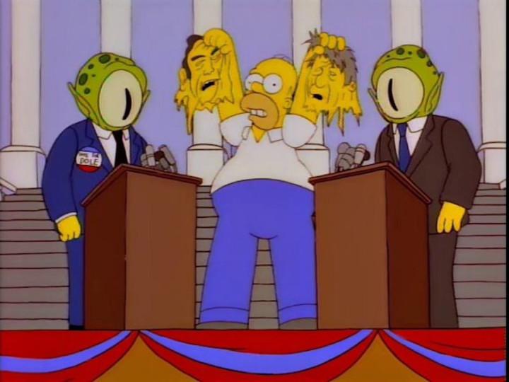 Homer Simpson Goes to Washington: American Politics through Popular Culture (None)