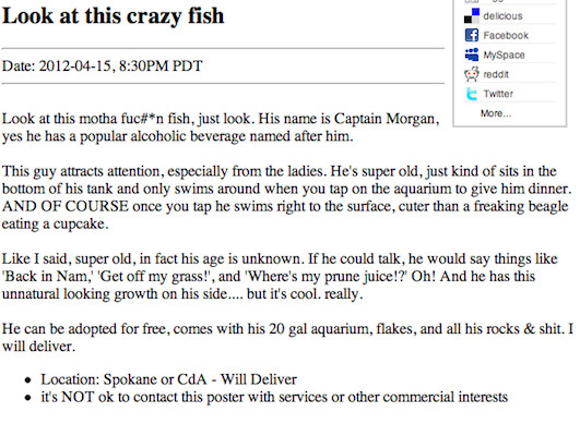 Gallery: The 20 Craziest Ads Currently On Craigslist   Complex
