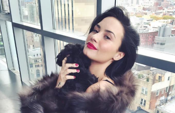 Demi Lovato Mentions Bipolar Disorder, Rips Trolls During Twitter Rant news