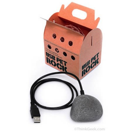 usb pet rock 25 inventions that are completely pointless