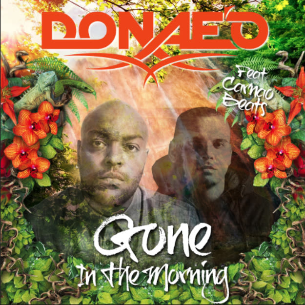 gone-in-the-morning-cover