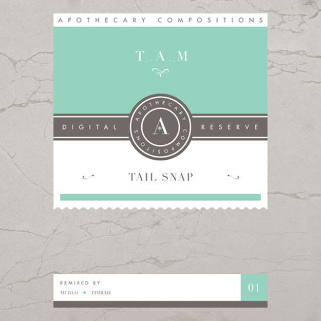 tam-tain-snap-cover