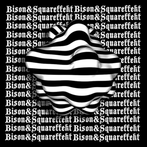 bison-squareffekt