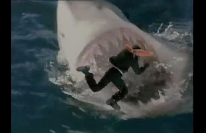 Shark Attack 3: Megalodon - Greatest Movie Shark Attack ...
