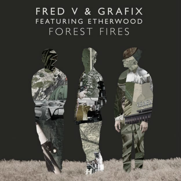 forest-fires-cover