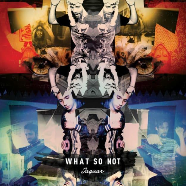 what-so-not-jaguar