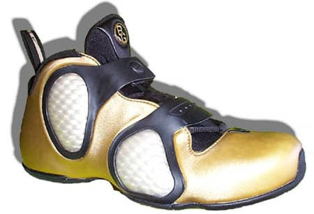ed25962ff7d ... Nike Flightposite III ...
