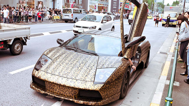 Gallery: 25 Outrageous Custom Animal Print Cars | Complex