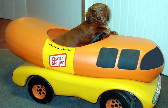 2004 on oscar mayer wienermobile contest