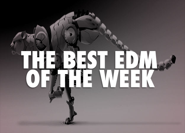 EDM-bigcat2