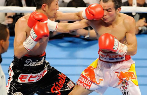 In nature s garb boxing