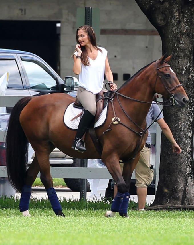 breyer horses dating