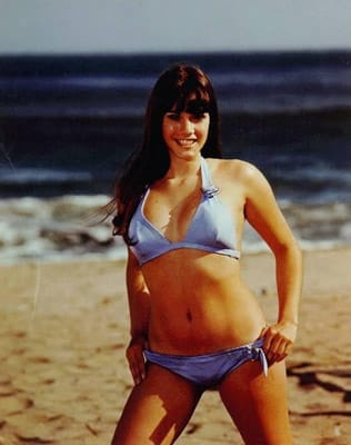 barbi benton   the 70 hottest women of the 70s complex