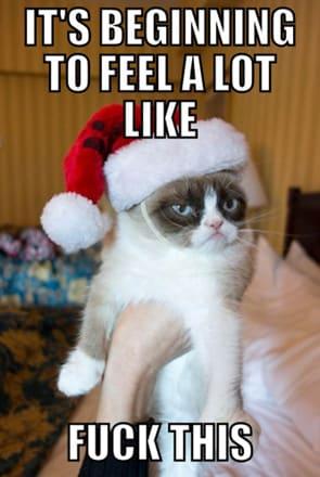 Grumpy cat christmas gift exchange