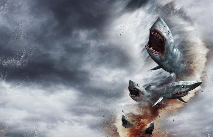 Shark movies on netflix canada / English horror movies list 2000 to 2014