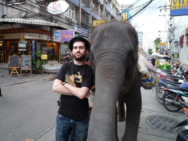 a-trak-elephant