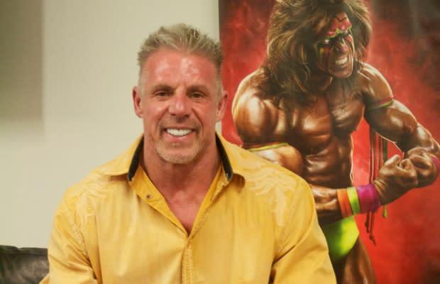 WWE Wrestlers b069b0a50e59