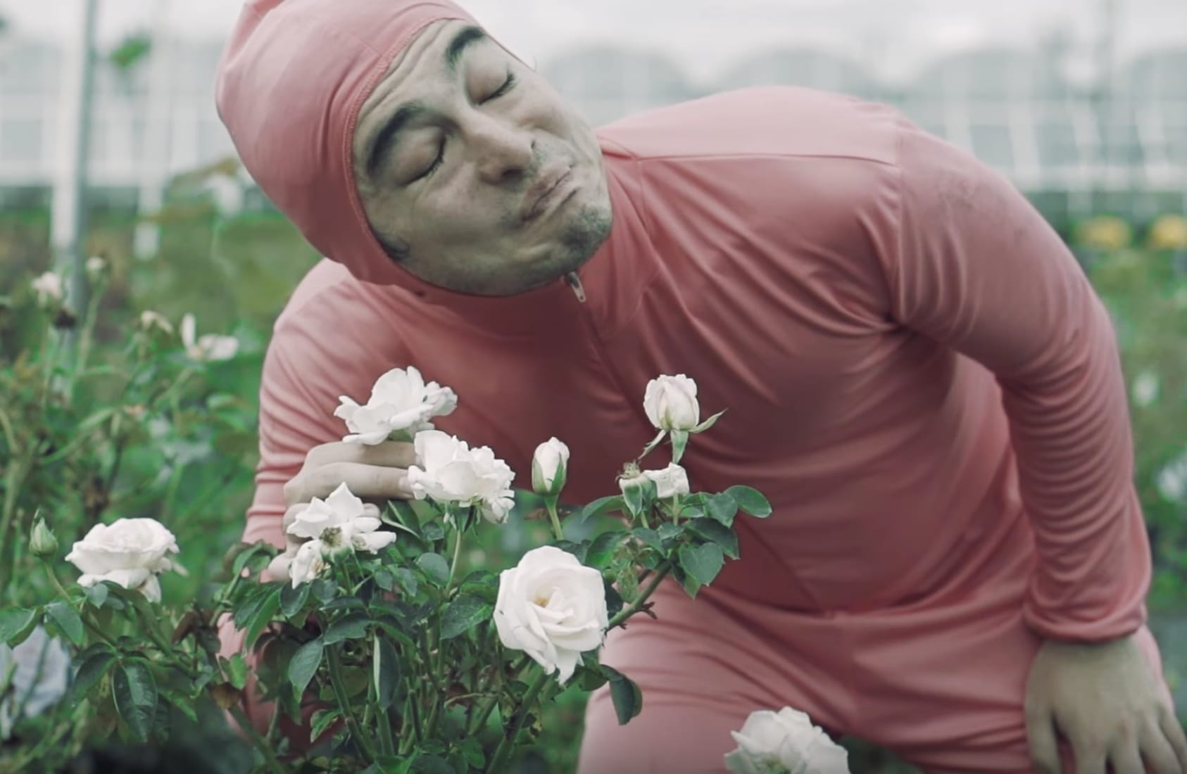 The Man Behind Pink Guys Bizarre Chart Topping Album Pink Season