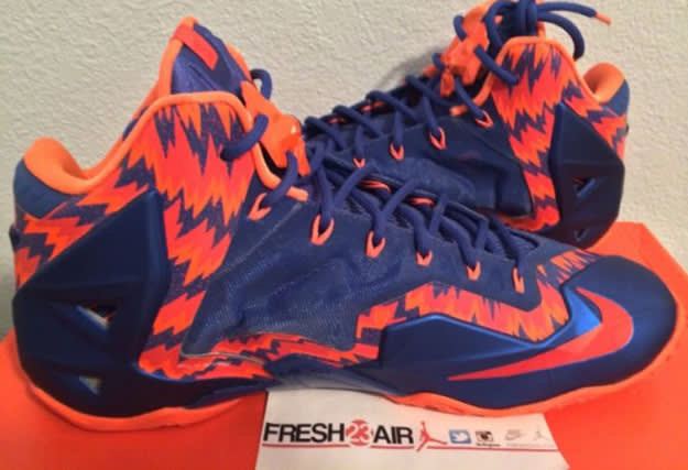 Florida Gators LeBron 11 PE