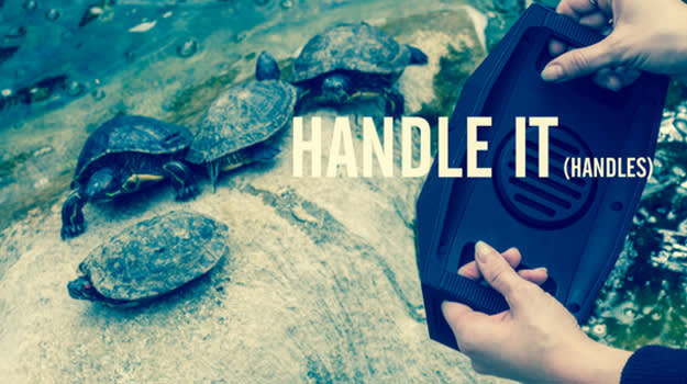 Big Turtle Shell Speaker